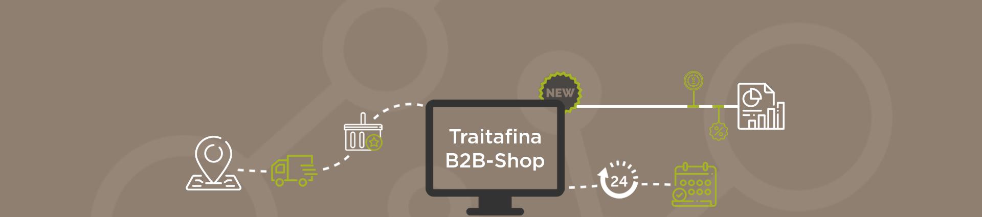 Banner_B2B-Shop_Online-1